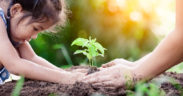 Aussie charity Save the Children gets nod from UN green bank